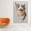 Turn your photos of your cat into fabulous art printed on poster