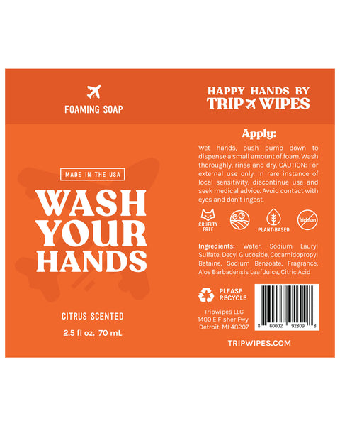 Foam Hand Soap ( Set of 2 )