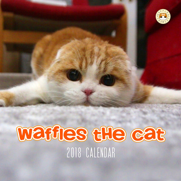 SOLD OUT Waffles the Cat Scottish Fold Cat 2018 Calendar