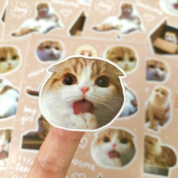 Waffles the Cat Sticker Sheet