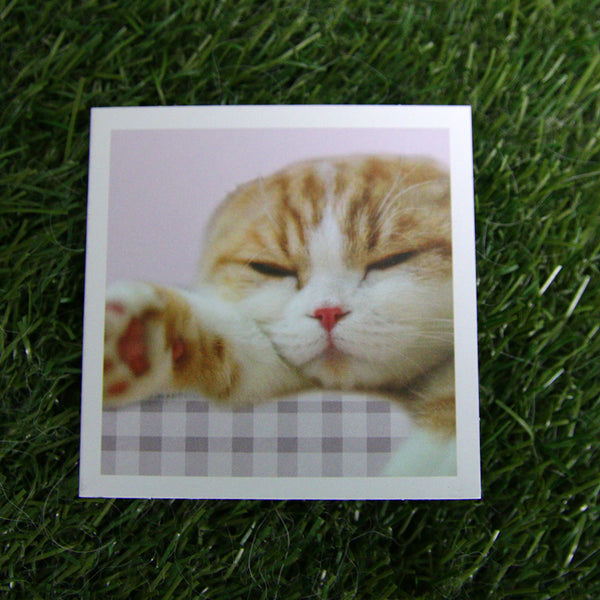 Waffles the Cat Gift Cards