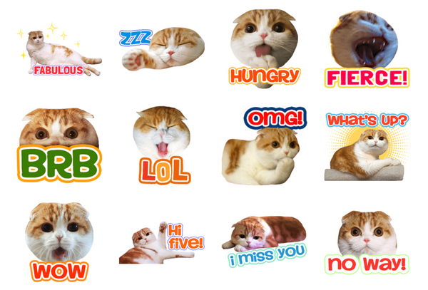Waffles Stickers for LINE