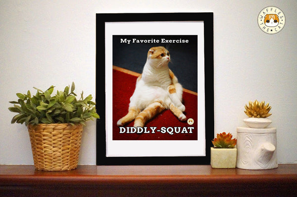 Diddly-Squat
