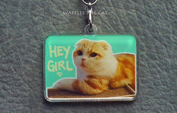 Cute Cat Acrylic Charm | Gift for Girlfriends | Hey Girl You're Beautiful | Phone Charm