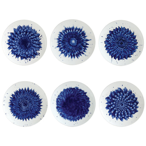 In Bloom Coupe Salad Plate - Set of 6
