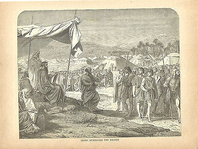 ANTIQUE RELIGIOUS PRINT MOSES NUMBERING THE PEOPLE   C1884 BIBLE PRINT - Back from the dead antiques