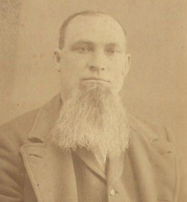 CABINET PHOTO GENTLEMAN THICK BEARD CHIN BEARD MICHIGAN - Back from the dead antiques