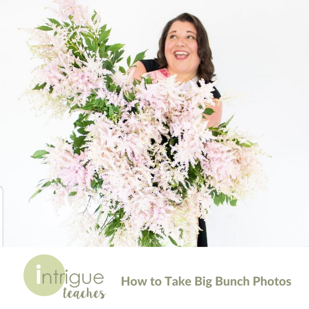 How to Take Big Bunch Photos