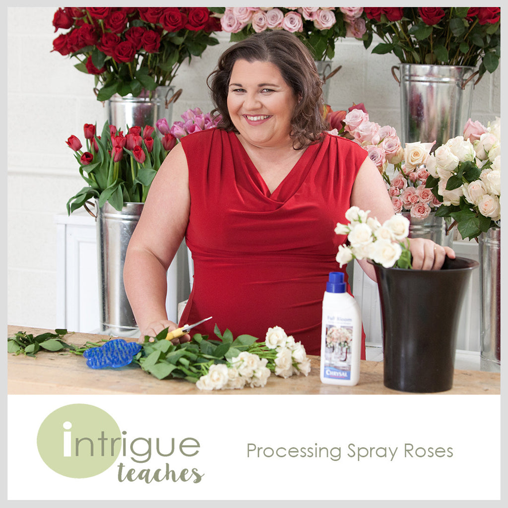 Processing Spray Roses