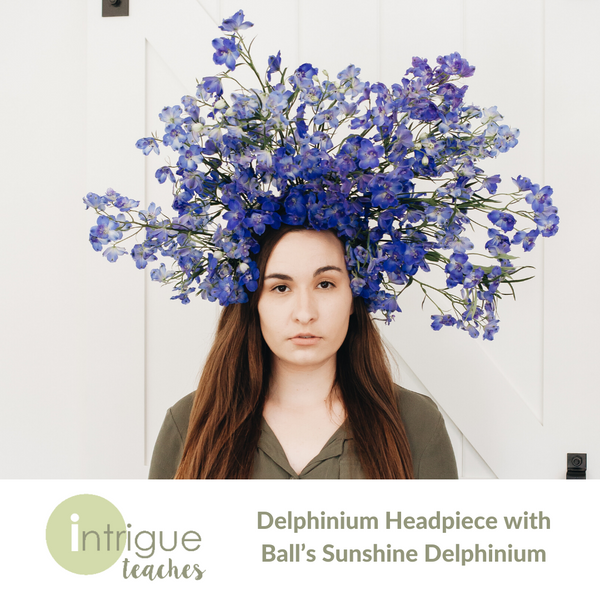 Headpiece with Ball's Sunshine Delphinium