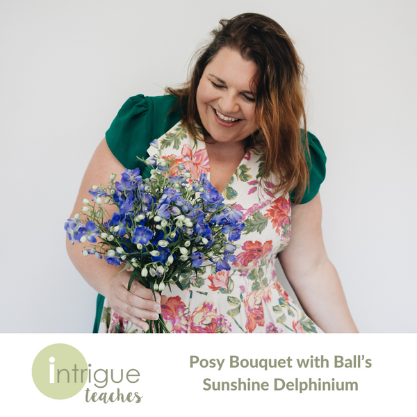 Delphinium Posy Bouquet with Ball's Sunshine Delphinium