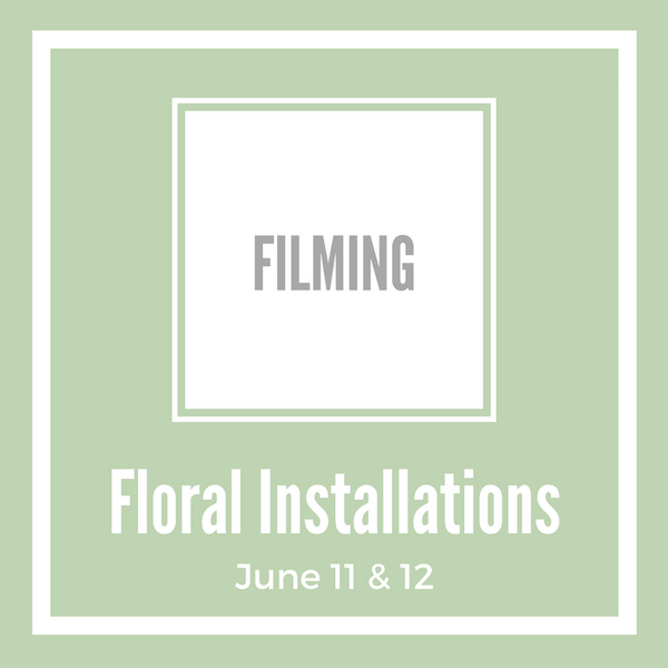 Floral Installations - Filming