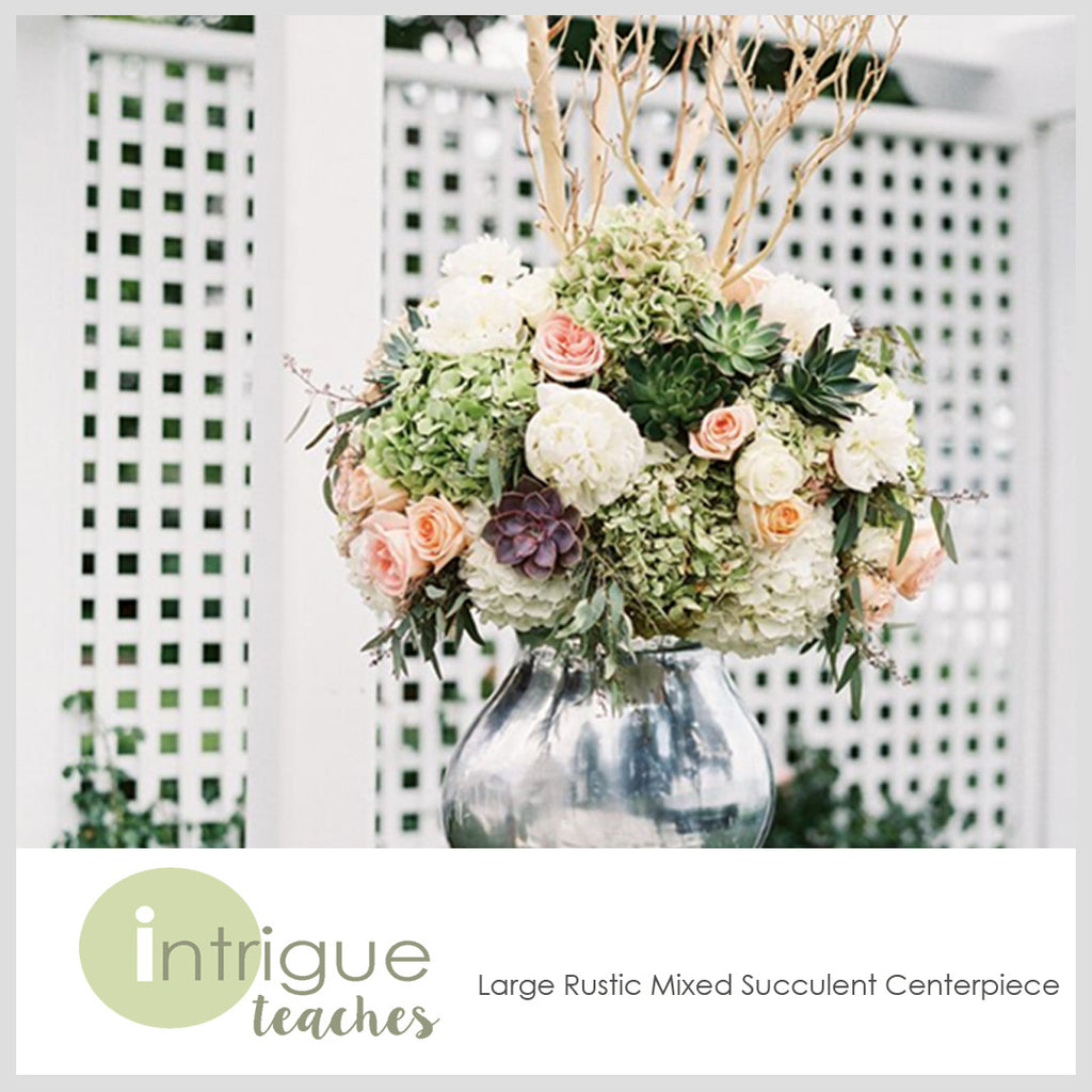 Large Rustic Mixed Succulent Centerpiece Intrigue Teaches