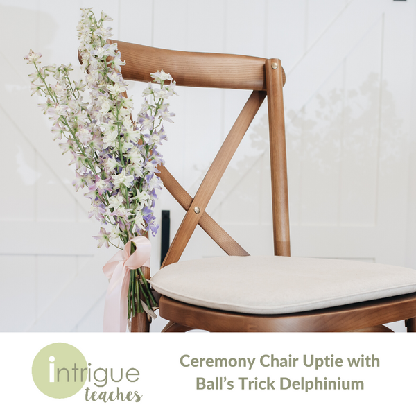 Ceremony Chair Uptie with Ball's Trick Delphinium