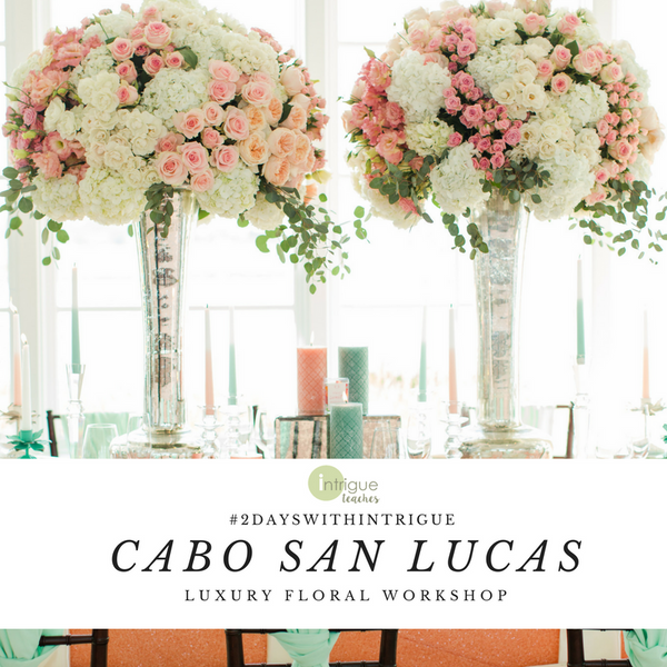 Cabo - Luxury Design Workshop  #2DaysWithIntrigue
