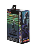 "Aliens vs Predator (Arcade Appearance) - 7"" Scale Action Figures - Arachnoid"