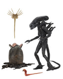 "Alien - 7"" Scale Action Figure - Ultimate 40th Anniversary Big Chap"