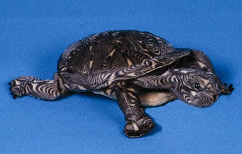 12 Wood Turtle Puppet