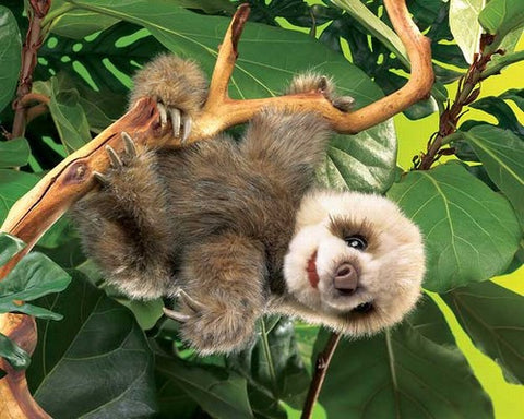Folkmanis Sloth, Baby Hand Puppet - 2927 - Peazz Toys