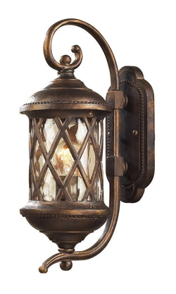 ELK Lighting 42030-1 One Light Outdoor Sconce In Hazlenut Bronze And Designer Water Glass - ELKLightingCenter - 1