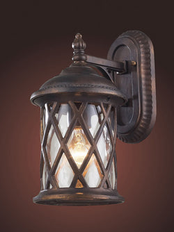 ELK Lighting 42035-1 One Light Outdoor Sconce In Hazlenut Bronze And Designer Water Glass - ELKLightingCenter