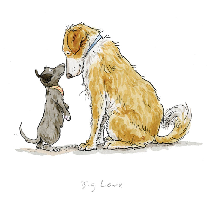 Big Love Print by Anita Jeram