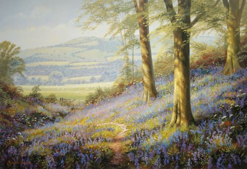 Sussex Bluebells Print by Christopher Osborne