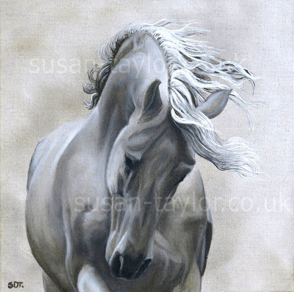 Spirit of the Horse 4 Print by Sue Taylor