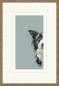 Curious Collie print by Nicky Litchfield