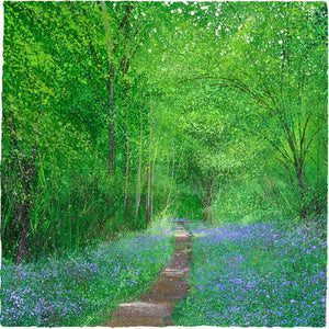 Bluebell Way Print by Paul Evans