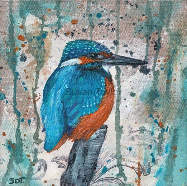 Kingfisher Print by Sue Taylor