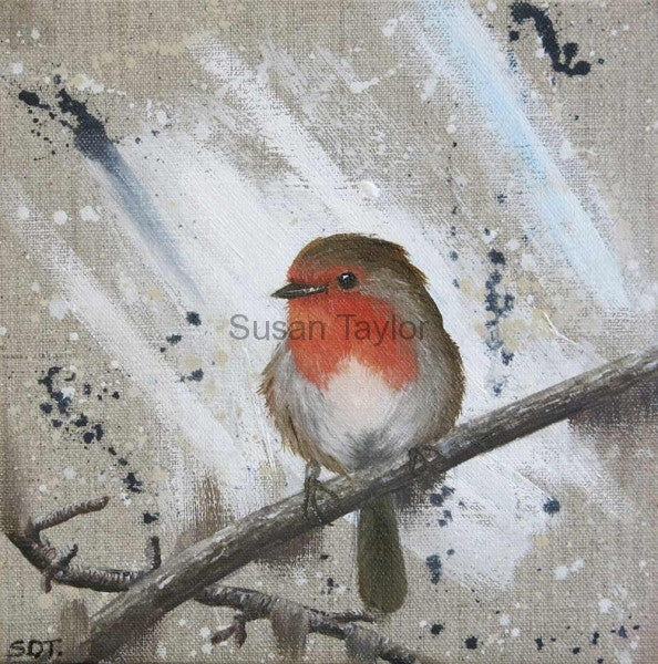 Little Red Robin Print by Sue Taylor