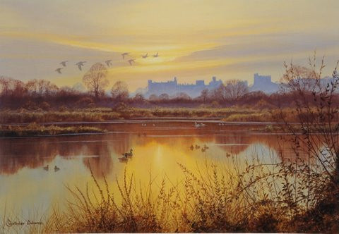 Wildfowl at Arundel Print by Christopher Osborne