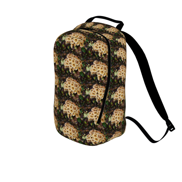 The Kalytheo backpack