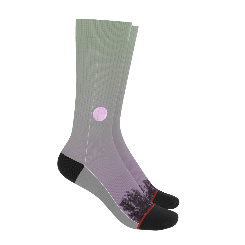 Moon Socks