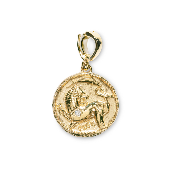"""ANIMAL KINGDOM SMALL DIAMOND COIN"" CHARM"