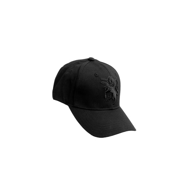 """DW 517 Black"" Hat"