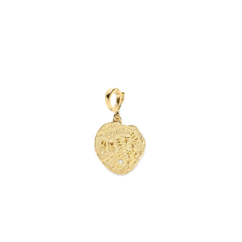 """ARETE SMALL DIAMOND COIN"" CHARM"