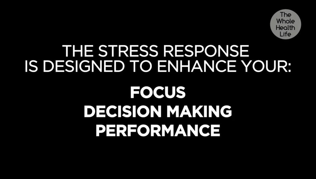 The Stress Mindset Reset