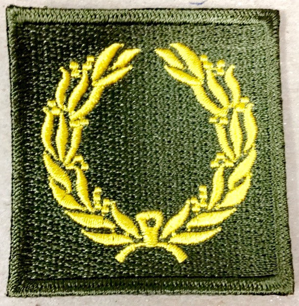 Patch, Meritorious Service