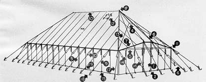 Tent and Fly, Squad, M1942 (No Stakes or Poles)