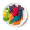 gummy rainforest frogs