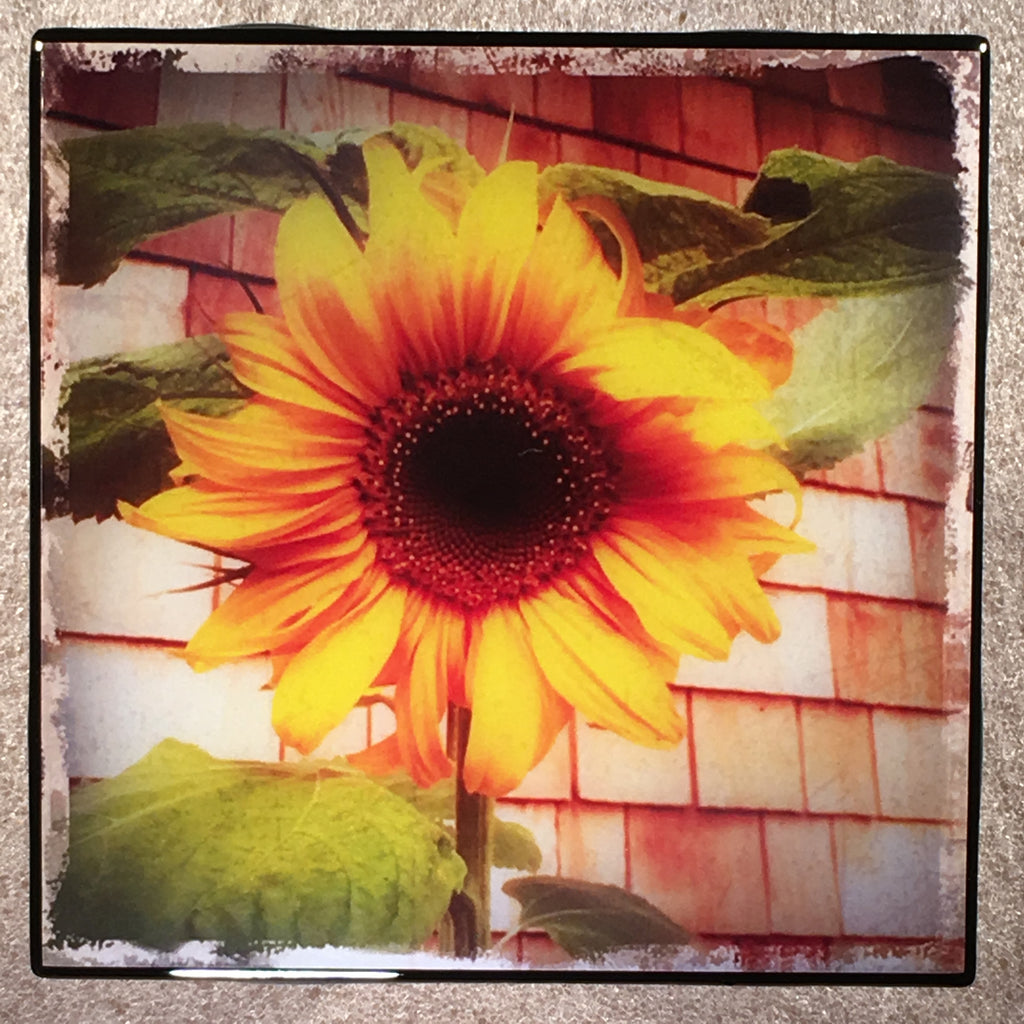 SUNFLOWER Coaster Ceramic Tile