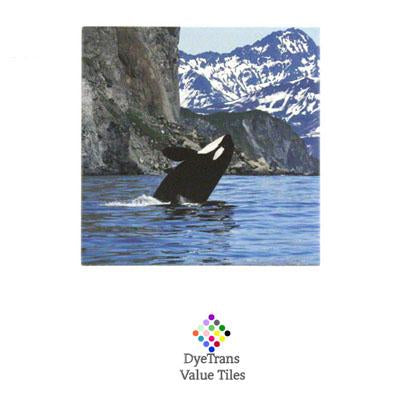 "DyeTrans Sublimation Blank Ceramic Value Tile - 6"" x 6"" - Gloss"