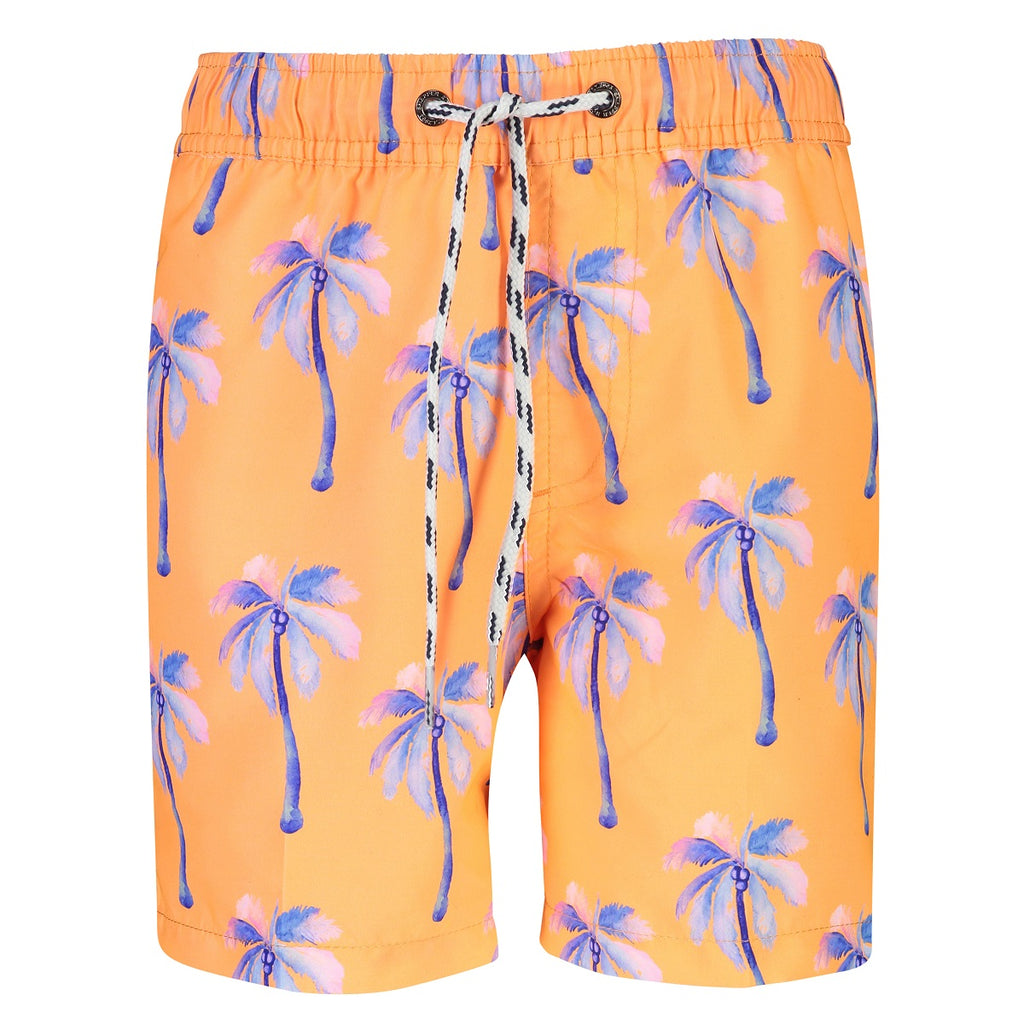 Snapper Rock Boardies B90070NC- Sunset Mooring Palm