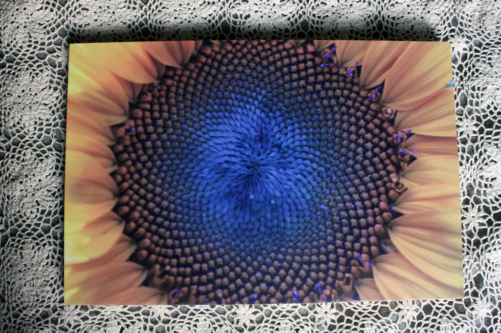 BLUE SUNFLOWER on Sustainable Wood