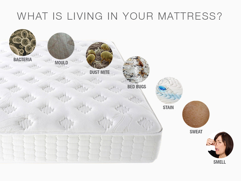 Is Having A Removable Amp Cleanable Mattress Cover Important