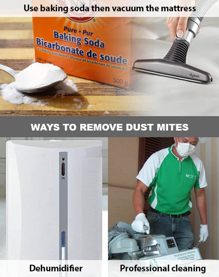 Ways to remove dust mite