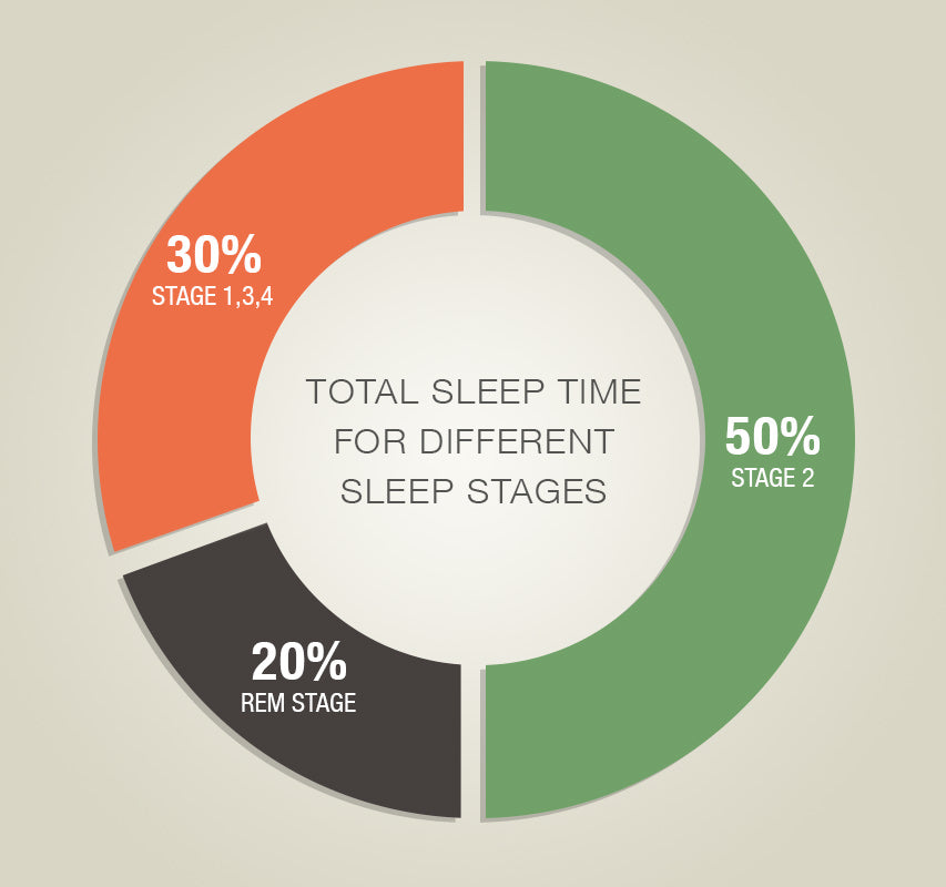 Total Sleep Time In Different Sleep Stages