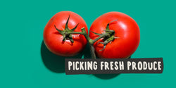 Six Tips to Picking Fresh Produce